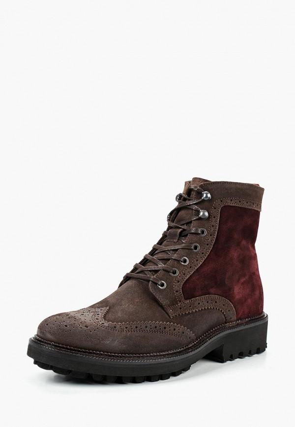 Купить Ботинки Kazar, ka044amdghg0, коричневый, Весна-лето 2019