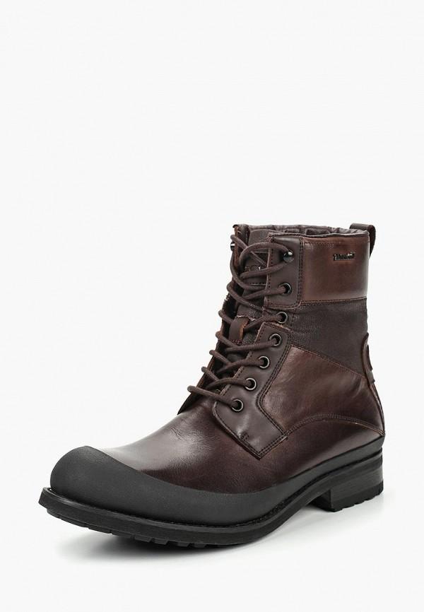 Купить Ботинки Kazar, ka044amdghh3, коричневый, Весна-лето 2019