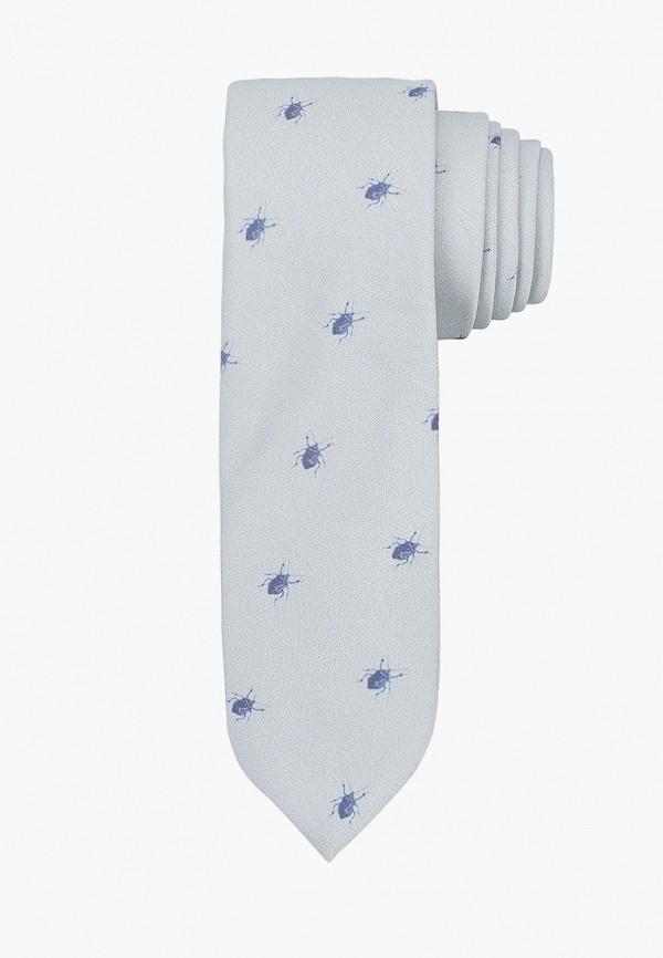 мужские галстуки и бабочки koton, голубые