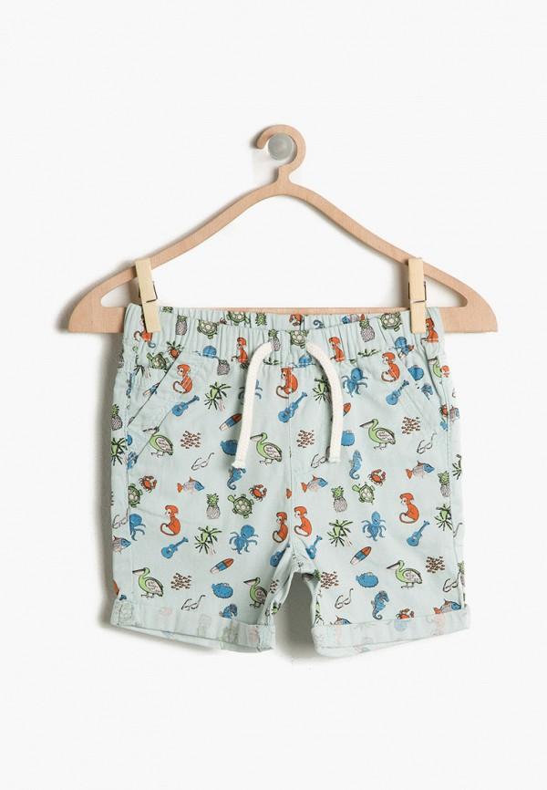 шорты koton для мальчика, голубые