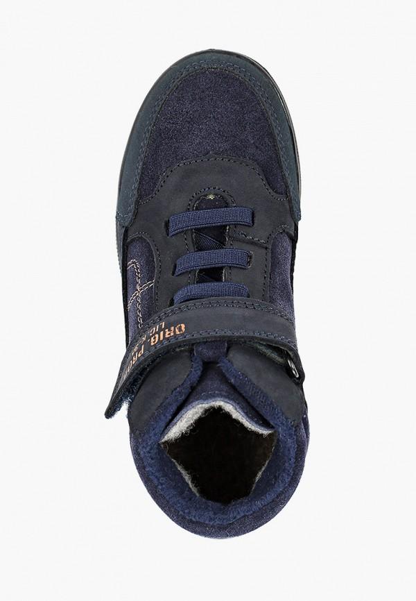 Ботинки для мальчика Котофей 552224-31 Фото 4