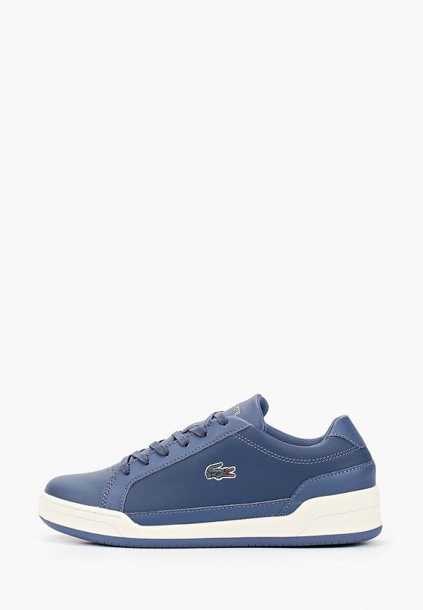 женские кеды lacoste, синие