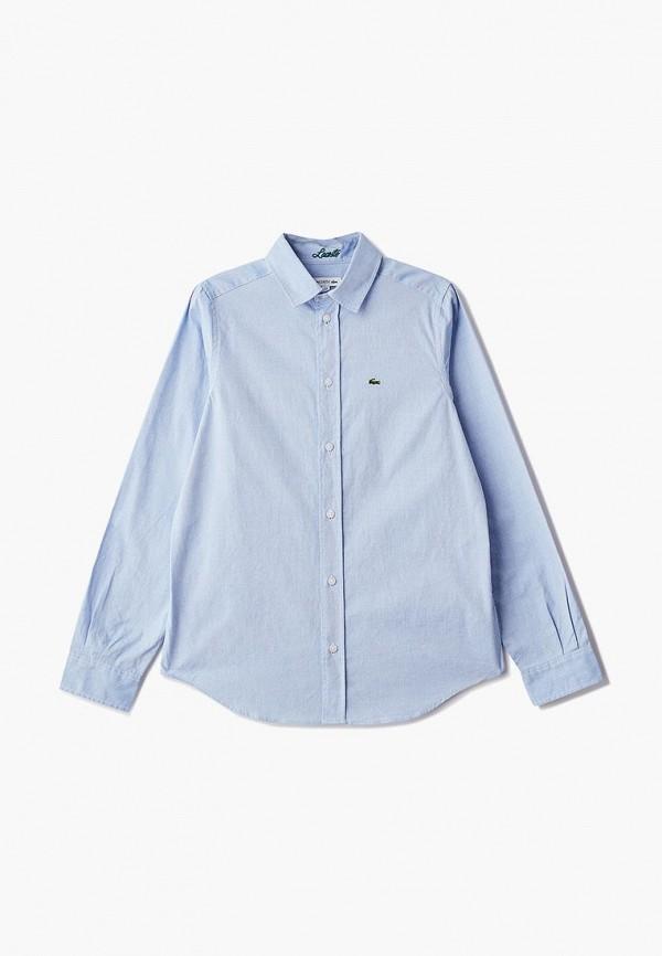 Рубашка Lacoste Lacoste LA038EBELRM5 рубашка мужская lacoste ch0687dhki1 65 15