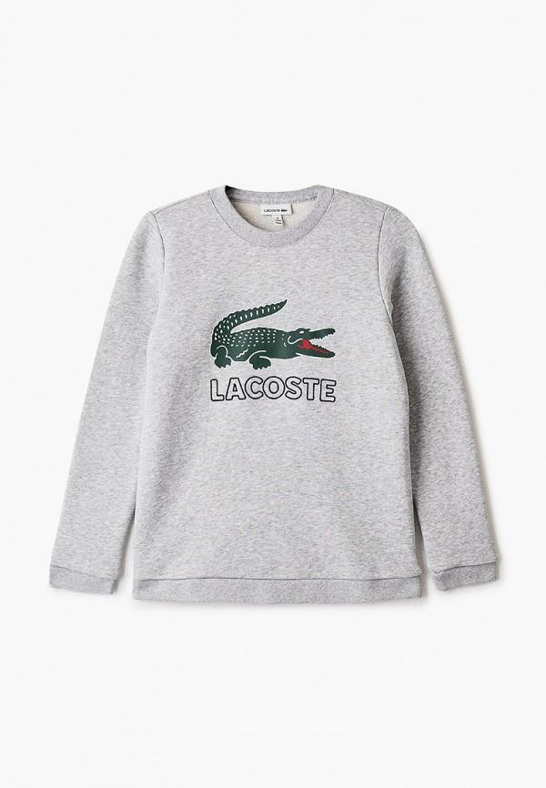 свитшот lacoste для мальчика, серый