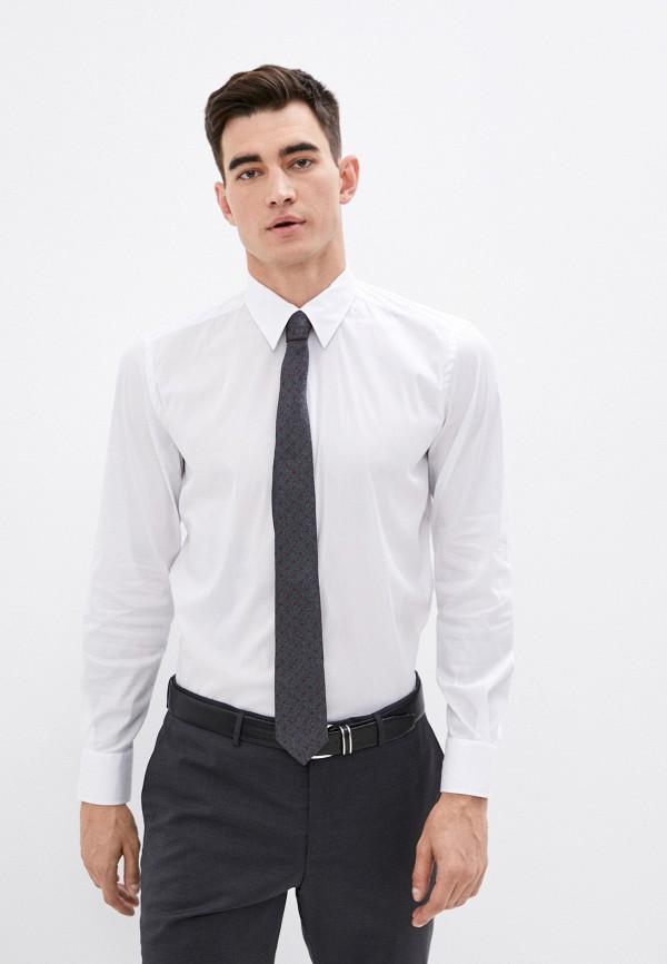 мужская рубашка с длинным рукавом lab. pal zileri, белая