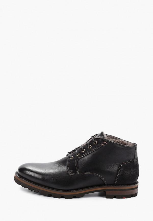 Ботинки Lloyd Lloyd LL007AMGHEV5 ботинки lloyd lloyd ll007amcwl84