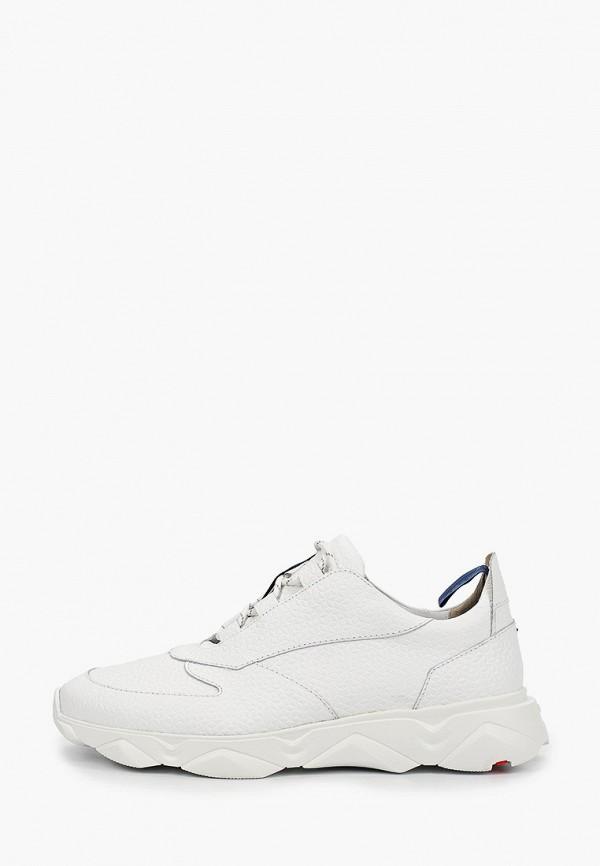 мужские кроссовки lloyd, белые
