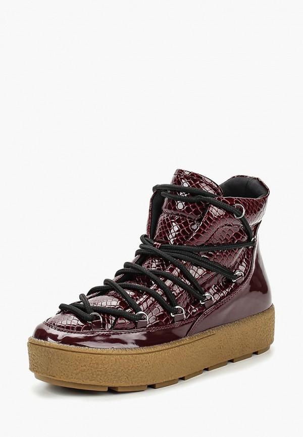 Купить Ботинки LOST INK, GABBI PATENT SNAKE MIX PADDED LACE UP, lo019awctbs6, бордовый, Осень-зима 2018/2019