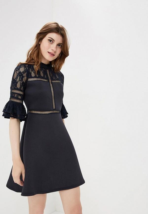 Купить Платье LOST INK, Scuba & Lace Insert Fit & Flare Dress, lo019ewccqf2, синий, Осень-зима 2018/2019