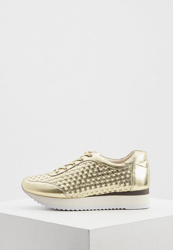 женские кроссовки loriblu, золотые