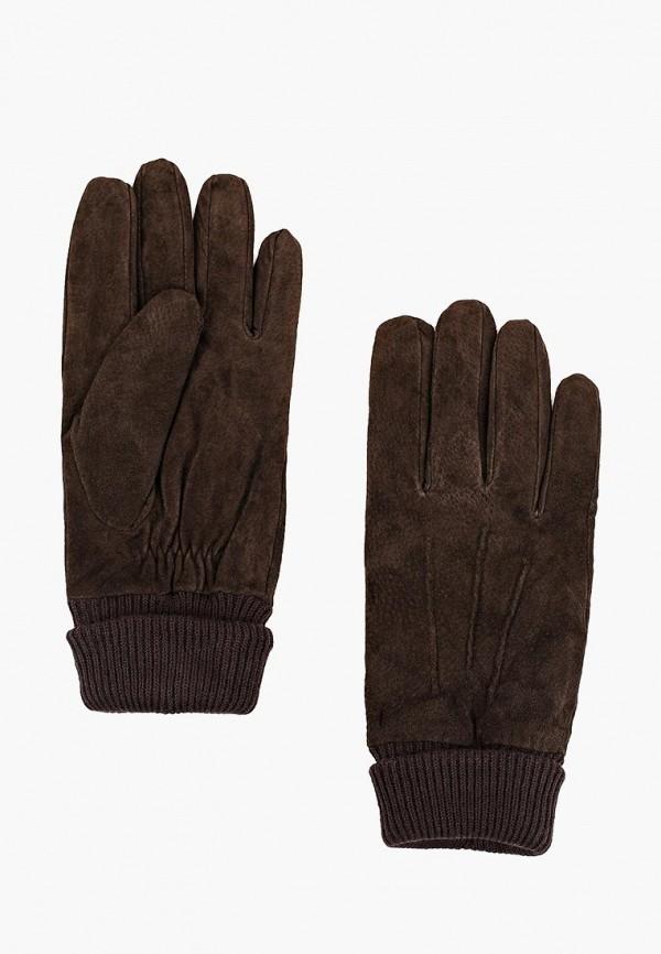Купить Перчатки Marks & Spencer, MA178DMYSB34, коричневый, Осень-зима 2017/2018