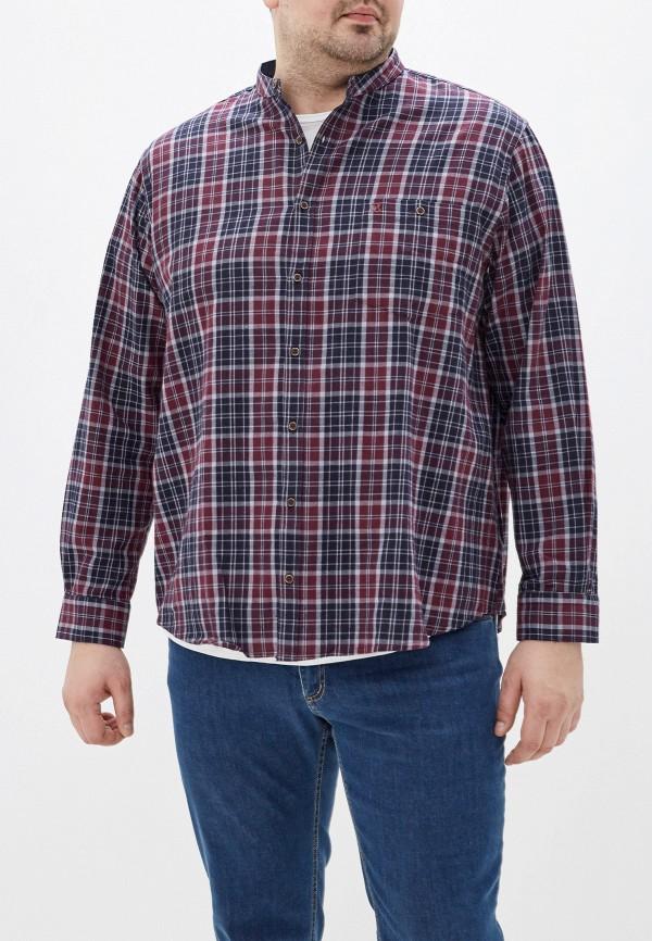 мужская рубашка maxfort, разноцветная