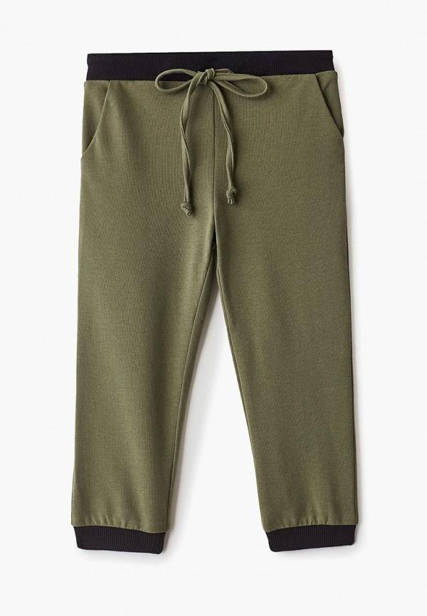 спортивные брюки misha & milo малыши, хаки