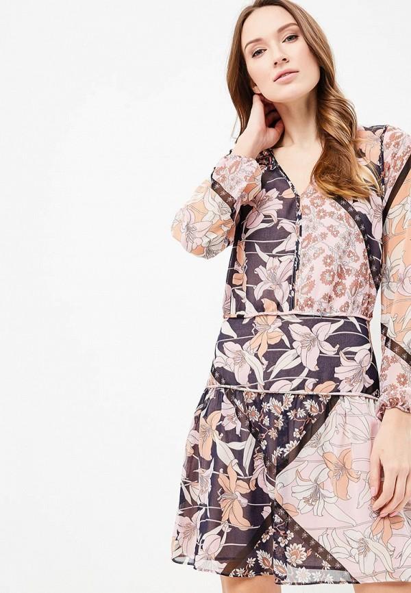 все цены на Платье Motivi Motivi MO042EWBEEM2