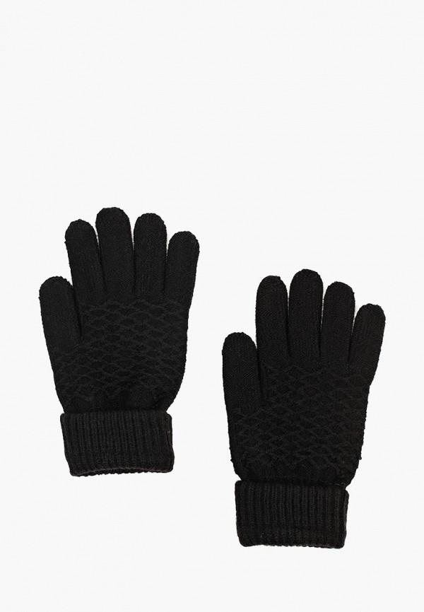 Купить Перчатки Modis, mo044dwcpgb0, черный, Осень-зима 2018/2019