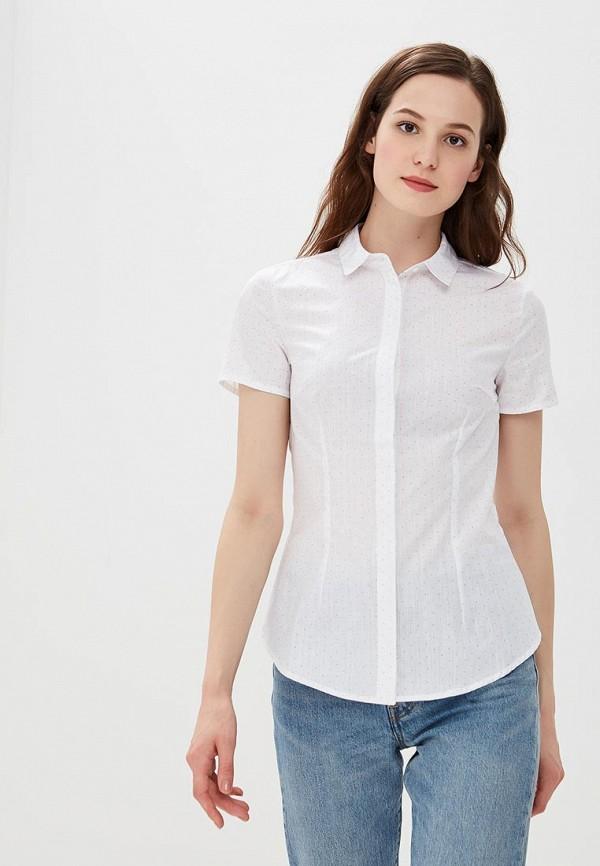 Блуза Modis Modis MO044EWBZUC9 блуза modis modis mo044ewtwa04