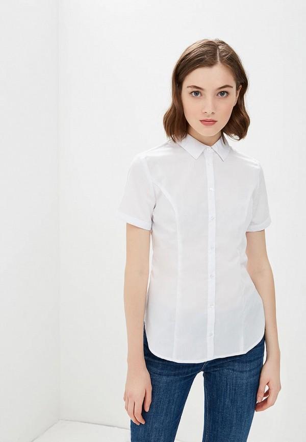 Блуза Modis Modis MO044EWCHLS3 блуза modis modis mo044ewvry84