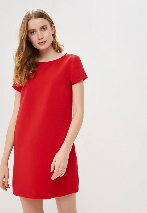 Платье Modis Modis MO044EWERVK9 платье modis modis mo044ewcsxx5