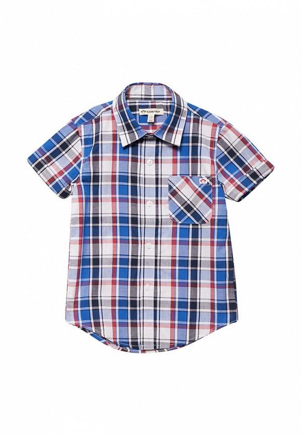 Рубашка Appaman Appaman MP002XB001WX