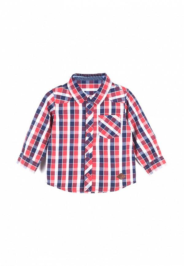 Рубашка Coccodrillo Coccodrillo MP002XB004DF рубашка quelle coccodrillo 1005037