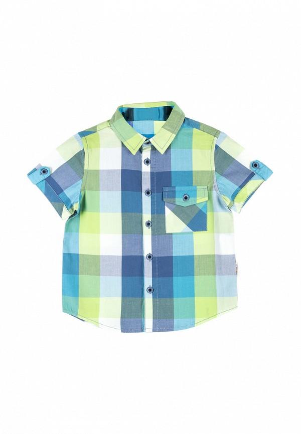 Рубашка Coccodrillo Coccodrillo MP002XB005RB рубашка quelle coccodrillo 1005037