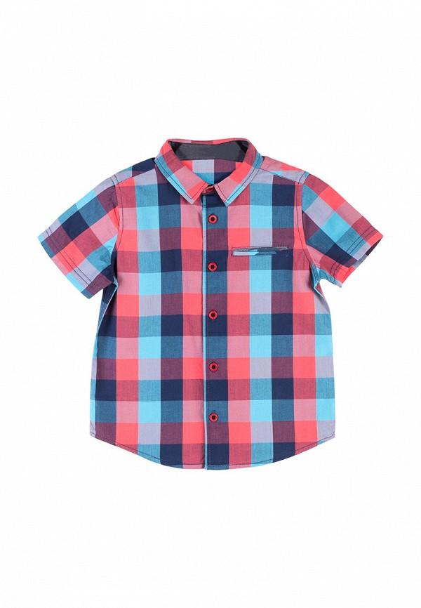 Рубашка Coccodrillo Coccodrillo MP002XB005RH рубашка quelle coccodrillo 1005037