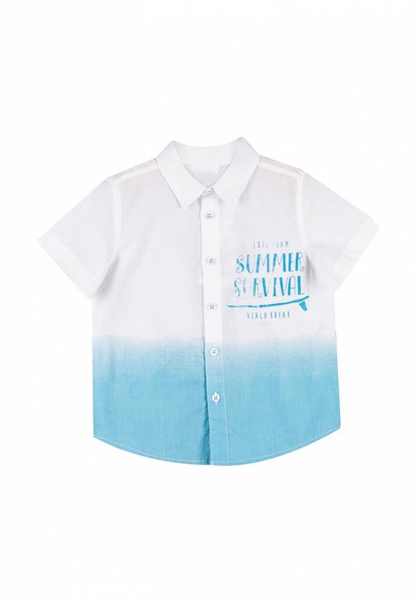 Рубашка Coccodrillo Coccodrillo MP002XB005RW рубашка quelle coccodrillo 1005037