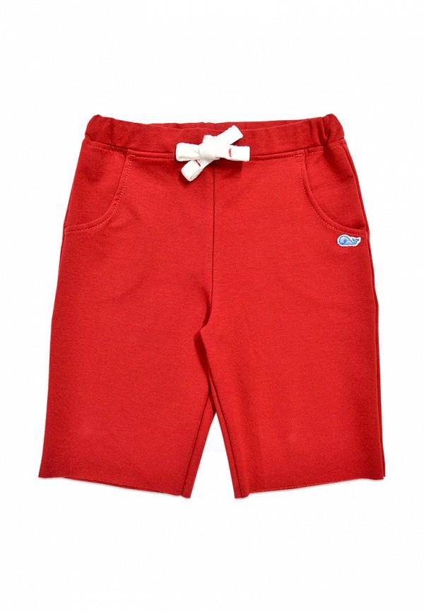 шорты кит для мальчика, красные
