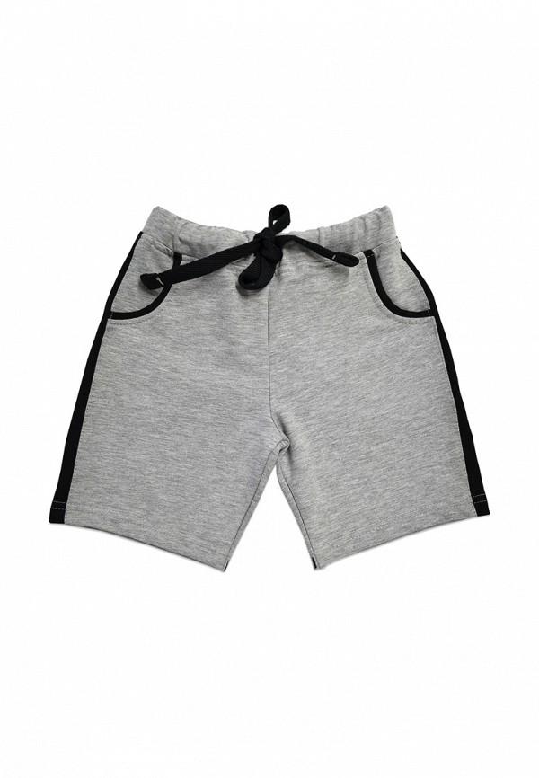 шорты кит для мальчика, серые