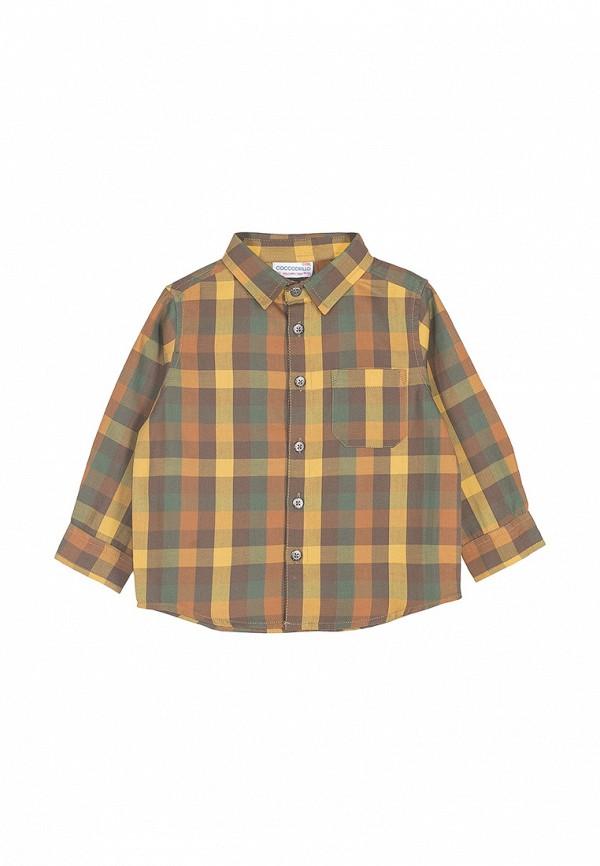 Рубашка для мальчика Coccodrillo цвет разноцветный