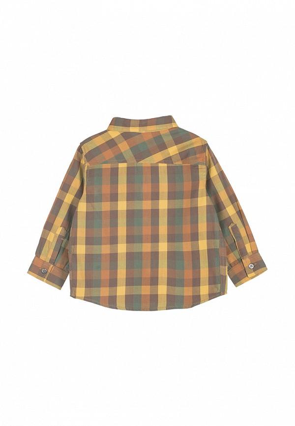 Рубашка для мальчика Coccodrillo цвет разноцветный  Фото 3