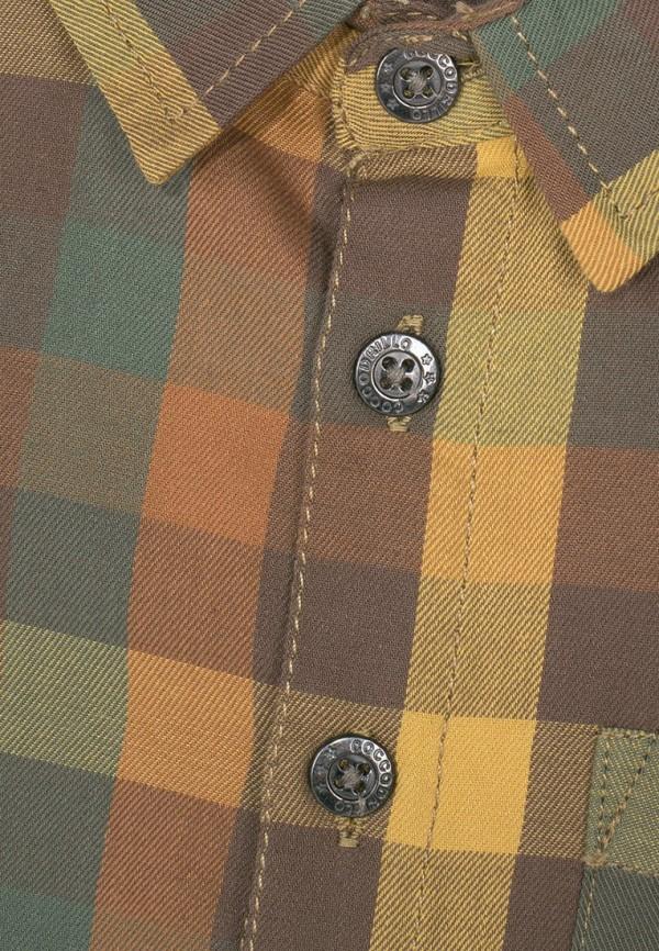 Рубашка для мальчика Coccodrillo цвет разноцветный  Фото 2
