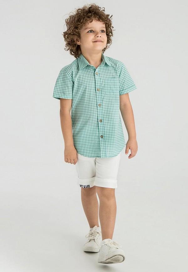 Рубашка для мальчика LC Waikiki цвет бирюзовый  Фото 2