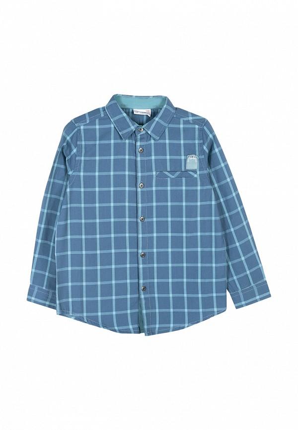Рубашка Coccodrillo Coccodrillo MP002XB00959 рубашка quelle coccodrillo 1005037