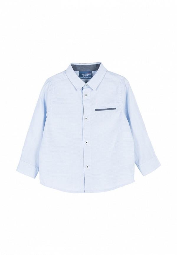 рубашка coccodrillo для мальчика, голубая