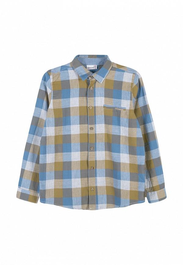 рубашка coccodrillo для мальчика, разноцветная