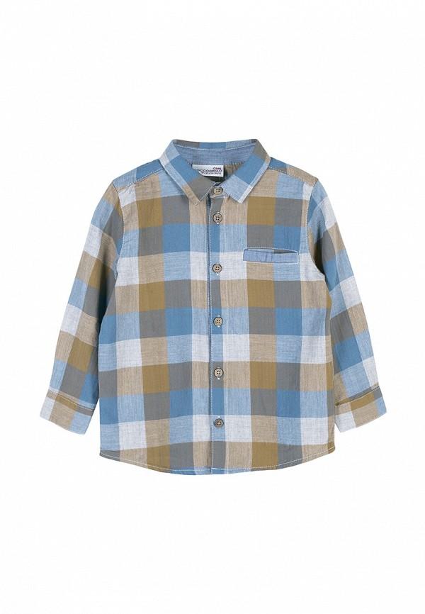 Рубашка Coccodrillo Coccodrillo MP002XB009LO рубашка quelle coccodrillo 1005037