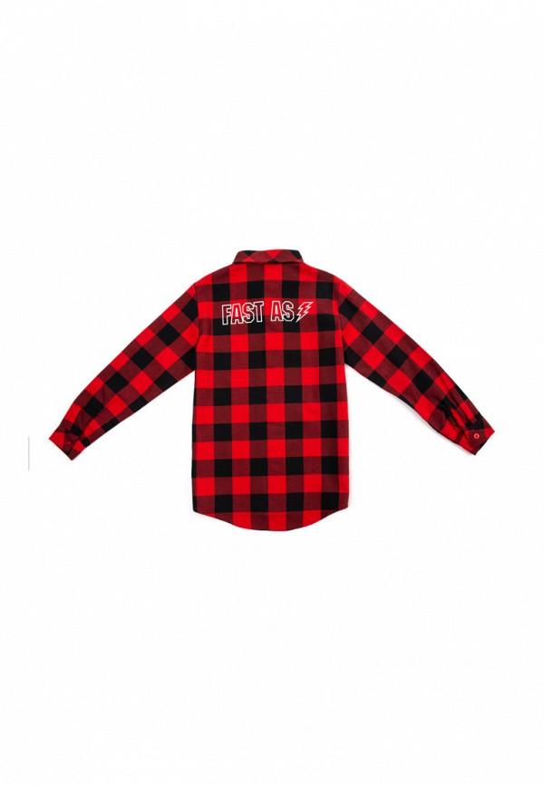 Рубашка для мальчика PlayToday цвет красный  Фото 7