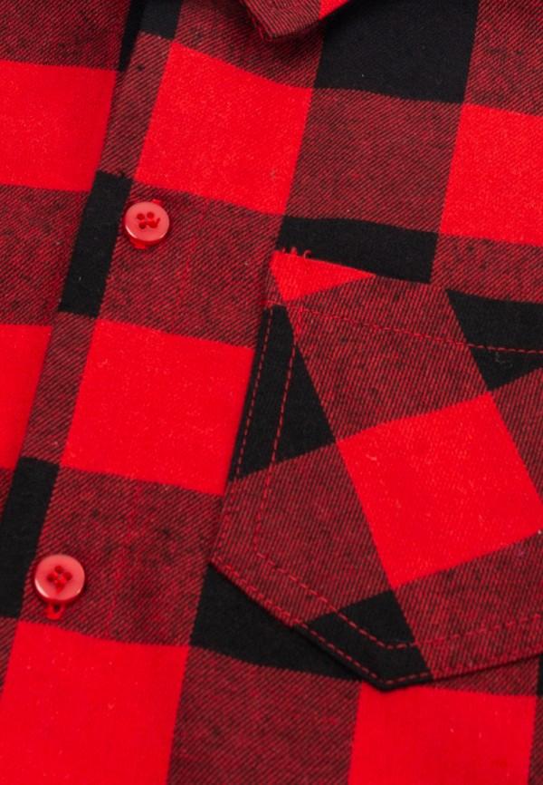 Рубашка для мальчика PlayToday цвет красный  Фото 5