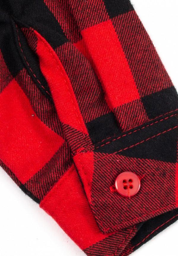 Рубашка для мальчика PlayToday цвет красный  Фото 3
