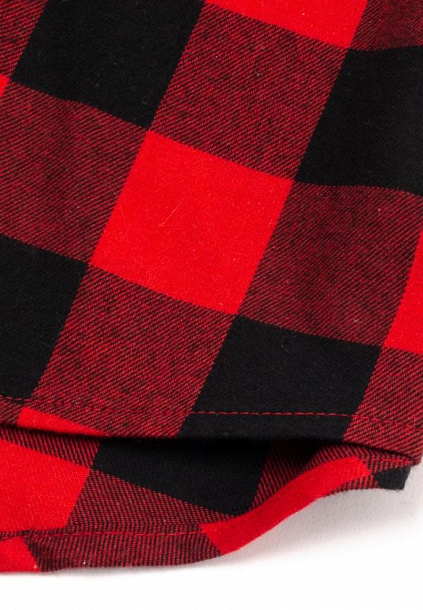 Рубашка для мальчика PlayToday цвет красный  Фото 2