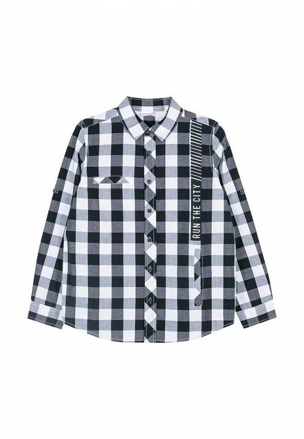 цена на Рубашка Coccodrillo Coccodrillo MP002XB00AXK