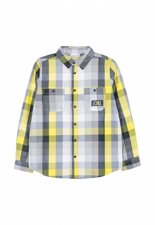 Рубашка Coccodrillo Coccodrillo MP002XB00AYF цена 2017