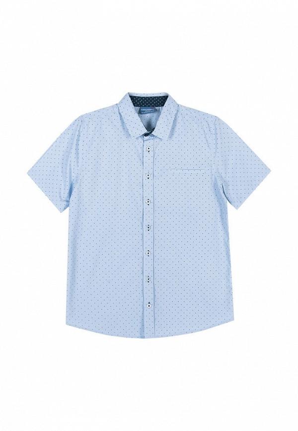 цена на Рубашка Coccodrillo Coccodrillo MP002XB00BXL