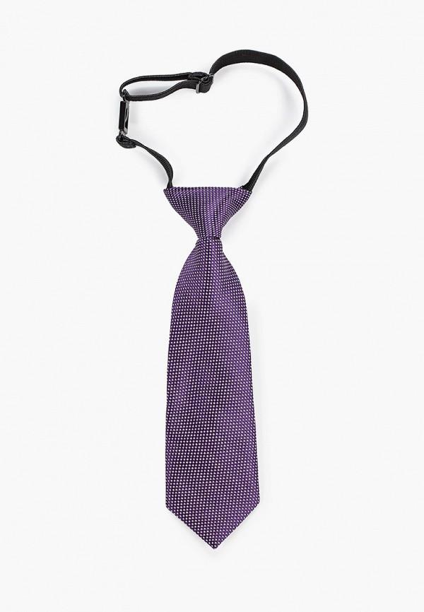 галстуки и бабочки stilmark для мальчика, фиолетовые