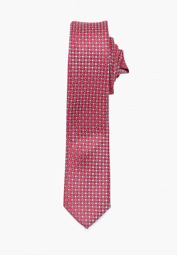 галстуки и бабочки stilmark для мальчика, красные