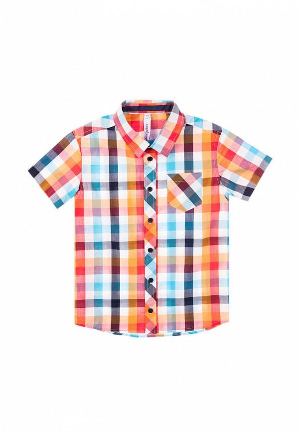 рубашка playtoday для мальчика, разноцветная