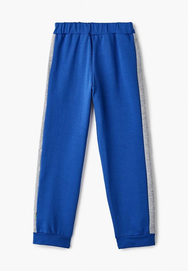 спортивные брюки looklie для мальчика, синие