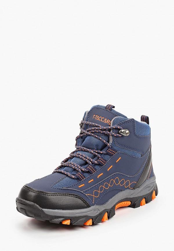 Ботинки для мальчика T.Taccardi цвет синий  Фото 2