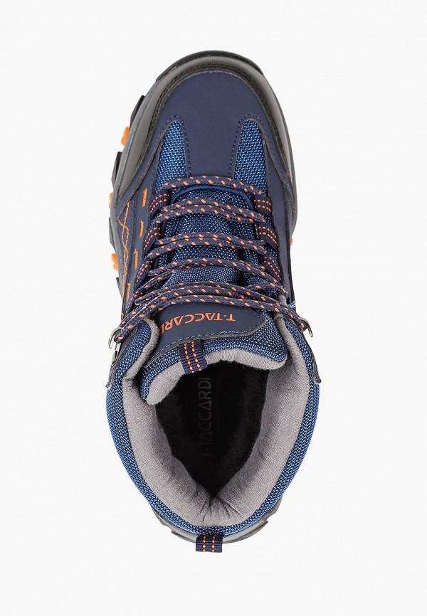 Ботинки для мальчика T.Taccardi цвет синий  Фото 4